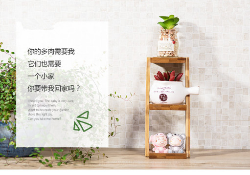 3 Tier plant shelf holder stand for succulent plant small table top storage shelf rack цена и фото