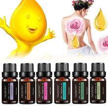 100% Pure Natural Aromatherapy Oils Kit 10ml For Humidifier