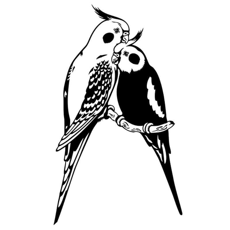 11 6X20CM Parrot Bird Interesting Fashion Vinyl Decal Car Sticker Black  Silver Accessories S6-2511