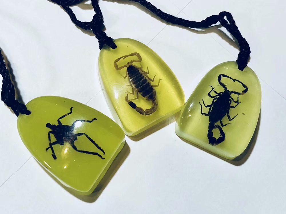 12 pcs insect key ring specimens creative Real mix charming glow keychain