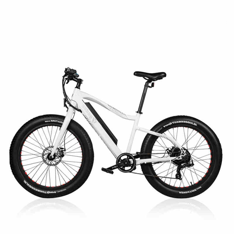 26inch Fat Ebike 36v Lithium Battery Electric Mountain Bicycle 4 0