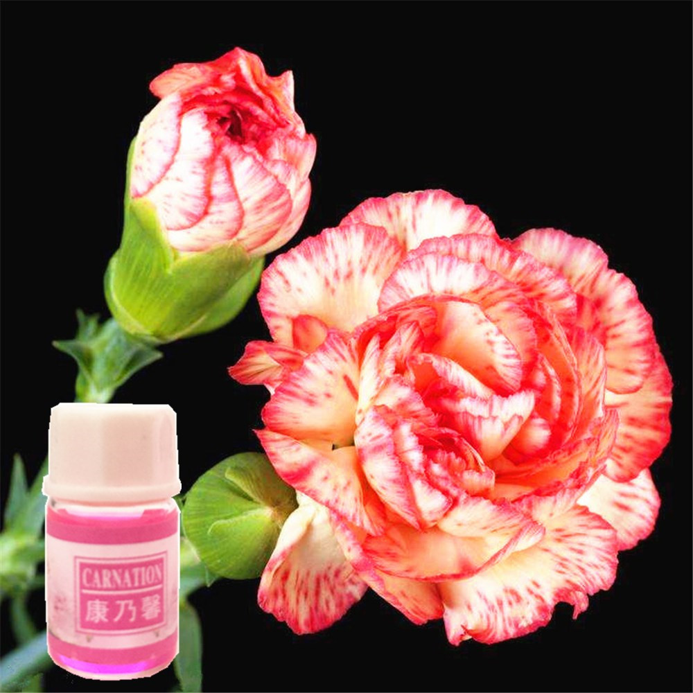 0 shipping fee new slimming Carnation essential oil to lose weight and burn fat lose weight fast reduce fat body products in Essential Oil from Beauty Health