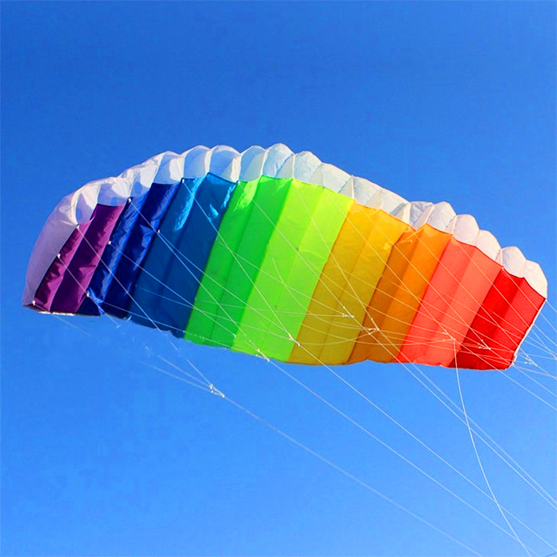 Free Shipping 270cm Dual Line Stunt Power Kite Soft Kite Parafoil Kite Surf Flying Outdoor Fun Sports Kiteboard Albatross Kites