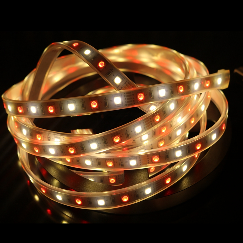 Obliging 5m/roll Dc12v 60leds/m Smd5050 Mixed Color Rgbw Rgb warm/cool White Rgbww Rgbcw Led Strip Light 5pin Ip67 300 Leds A Great Variety Of Goods