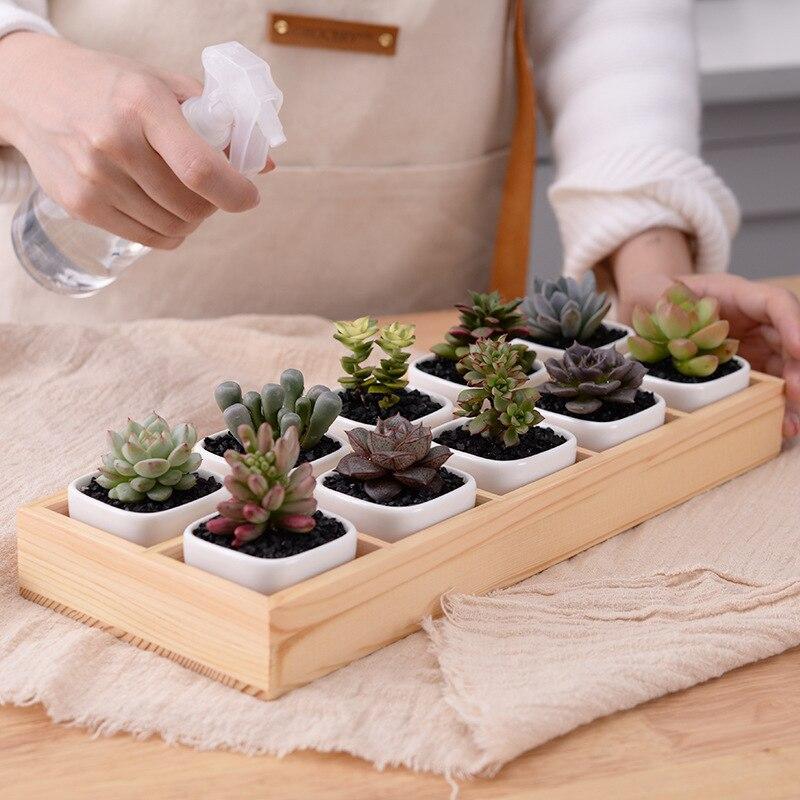 Набор Современные Геометрические белый квадрат Керамика сочные кашпо рабочего Цветочные горшки с лоток для украшения дома (10 pots + 1 лоток)