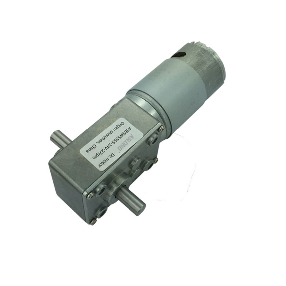 A58SW555S-2480  high torque 24V 5A  Double shaft gear motor stradley randy sw dark times v 5