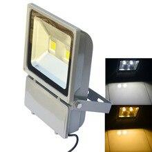 Водонепроницаемый 100 Вт 2-COB 8200lm из светодиодов прожектор-бесплатная серый ( AC 85 ~ 265 В )