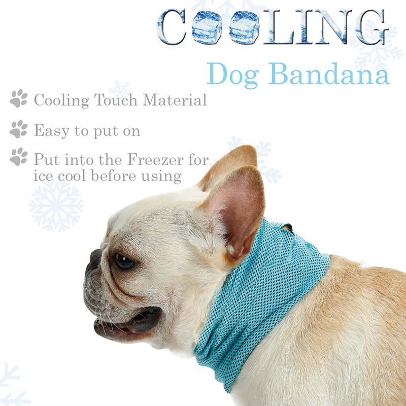cooling dog collar