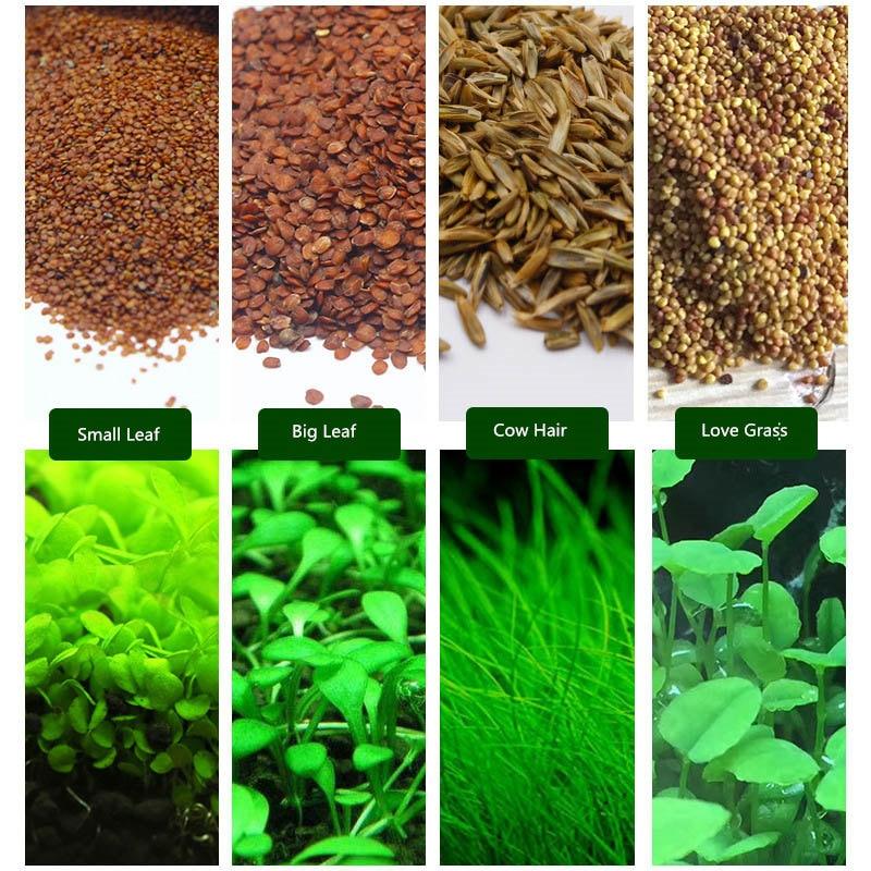 6 Pack Aquarium Plants Aquatic Water Grass Seeds Cow-hair LOVE Lucky Seeds Fish Tank Decoration Landscape Ornament