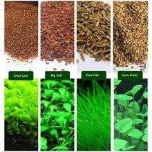 6 упаковок аквариумных растений водная трава Семена коровья шерсть любовь счастливые семена аквариума украшение Пейзаж орнамент