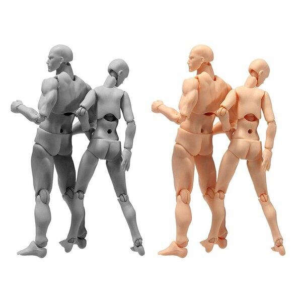 Figuarts Body Kun & Body Chan DX Set Male Female Figma Bandai SHF Ferrite PVC Action Figure Model(China)