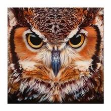 animal owl DY Diamon dround painting Cross Stitch 5D Diamond Embroidery  DiamonId Mosaic Picture Rhinestone decor
