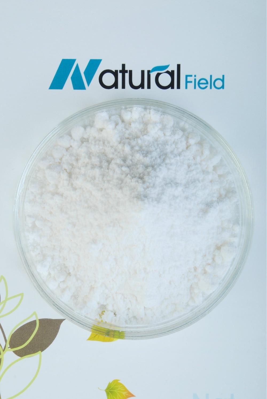 50g Pure Minoxidil Powder Or Minoxidil Sulfate Powder Kitchen Toy White Powder Play Dough Hair Growth Loss Treatment