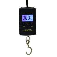 40kg x 10g Mini Digital Scale for Fishing Luggage Travel Weighting Steelyard Hanging Electronic Hook Scale Handheld Weigher