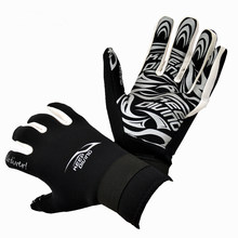 2MM Neoprene Professional Scuba Diving Gloves Warm And Non-slip Snorkeling Equipment Wetsuit Wet Suit New(China)