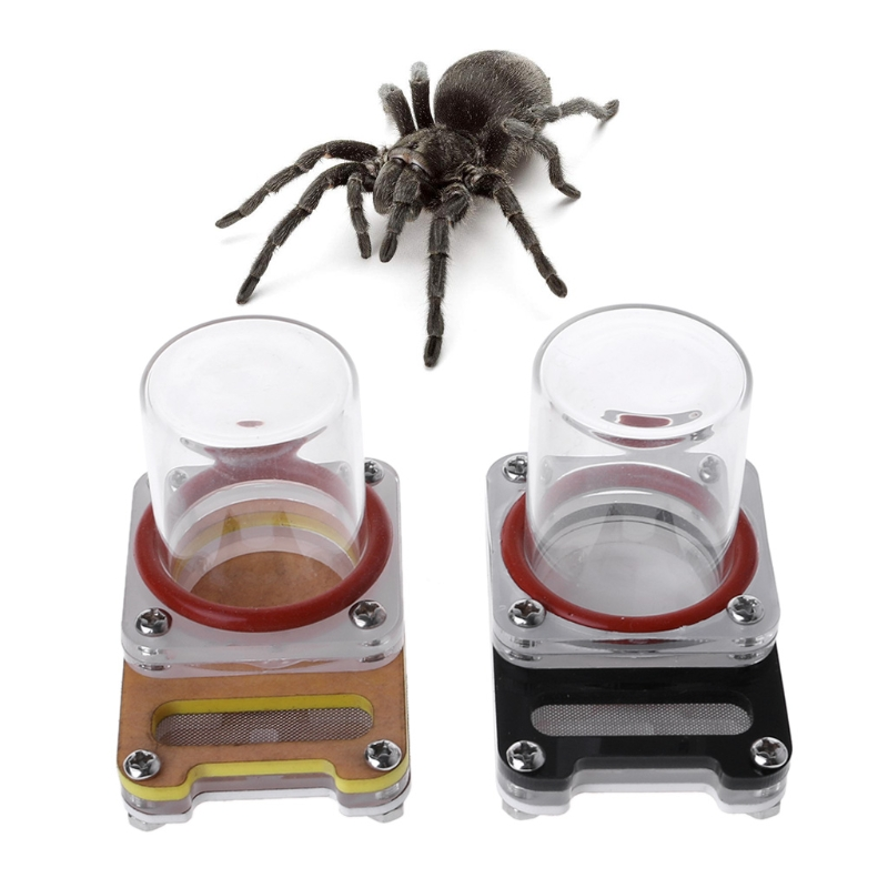 Acrylic Ant Farm Feeding Ant Water Feeder Drinking Bowl For Ant Nest Insect