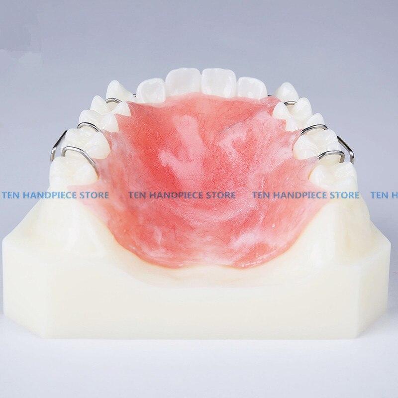 2018 bonne qualité 1 pièces modèle d'appareil orthodontique dentaire avec des orthèses de retenue de formateur de dents enseignement et Science - 2