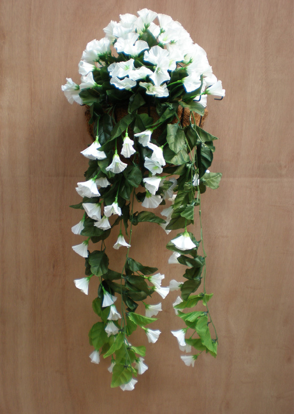 1stem morning glory hanging flower artificial silk flower trailing 1stem morning glory hanging flower artificial silk flower trailing plants imitaion plants white in artificial dried flowers from home garden on mightylinksfo