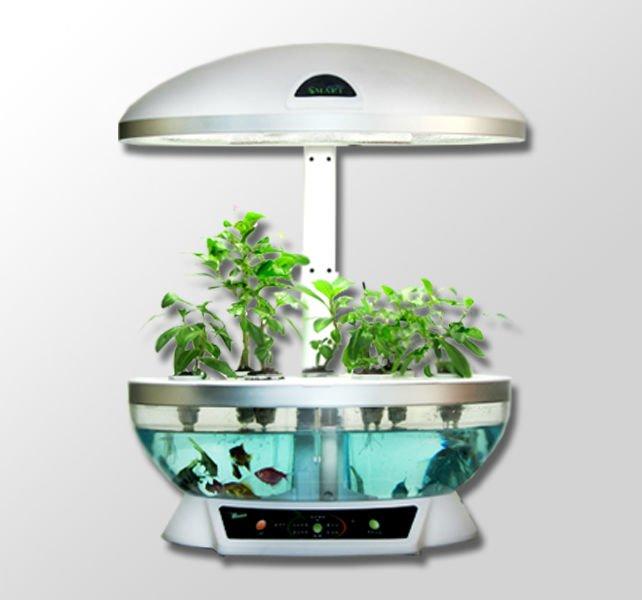 Intelligent Flowerpot, Creatively Table Lamp, Smart Garden, Can Grow  Flowers, Breathe A ...