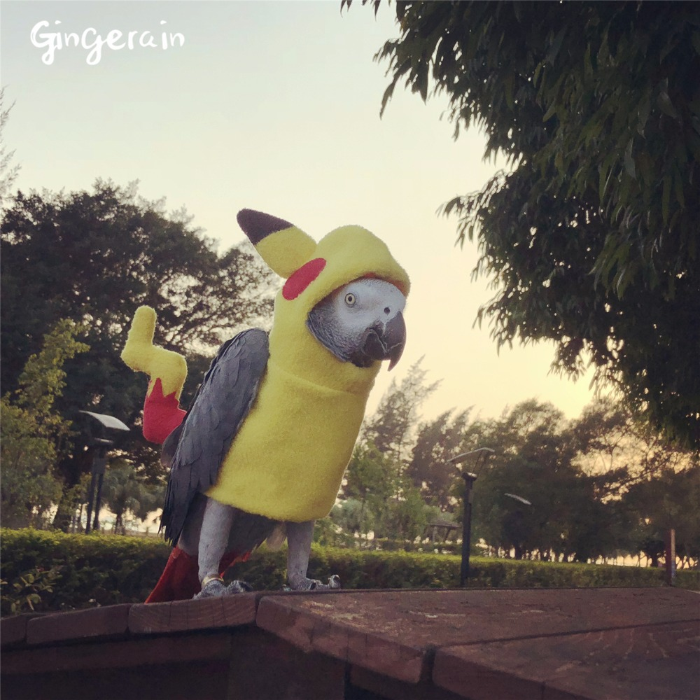 Gingerain Bird Clothes Parrot Clothes Bikachu Original Hand-made Custom Bird Clothes Hooded Sweater Bikachu
