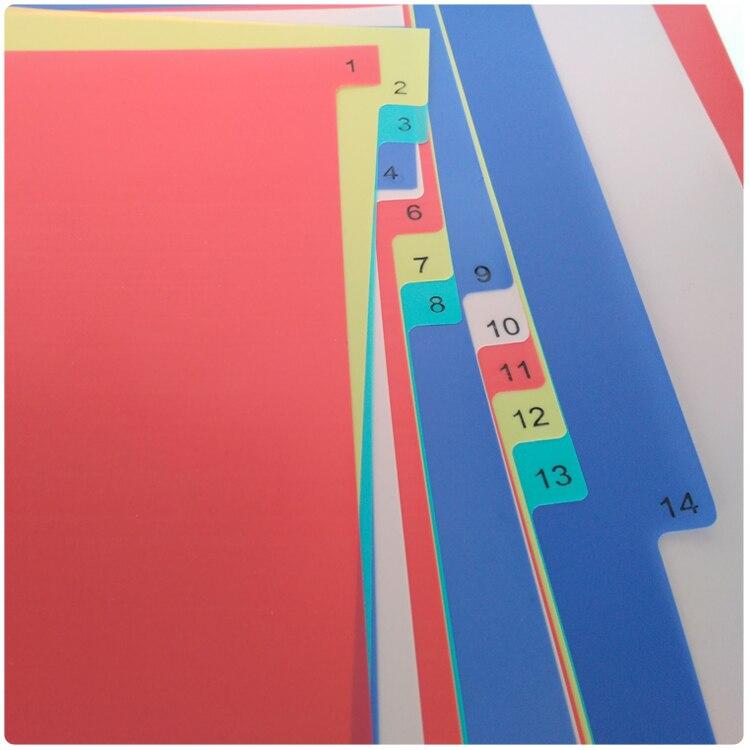 a4 31 paginas coloridas pp binder index 01