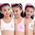 Los niños/niños/Adolescentes Pubertad Joven estudiante chica ropa interior de algodón de dibujos animados de impresión camisole Bras de Formación (8-12Y)