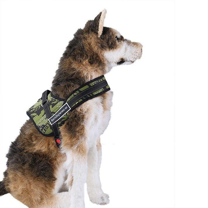 Cinturón de seguridad de banda 15mm huellas de perro correa collar Neon 4 colores