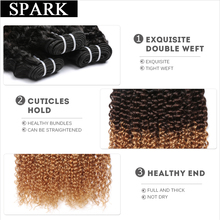 Spark 3 Tone Ombre Brazilian Remy Hair T1B/4/27 Kinky Curly Weave Human Hair Extensions Can Buy 4 Bundles or More Free Shipping