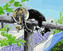 Frameless Picture  The cats Painting By Numbers Modern Wall Art Handpainted Oil On Canvas For Home Decoration