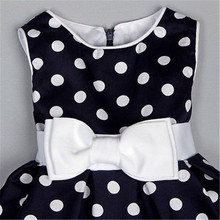 Flower Girl Polka Dot Wedding Tutu Dress