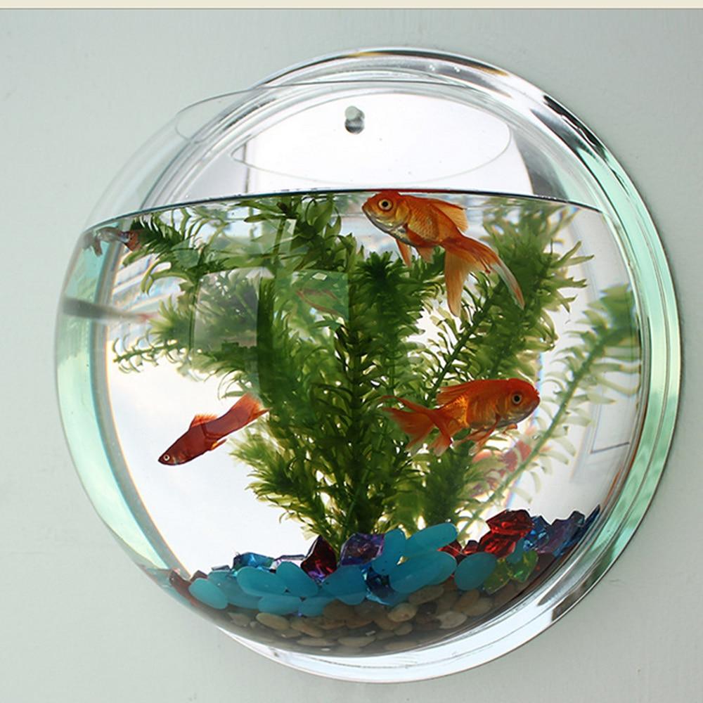 Pot Plant Wall Mounted Hanging Bubble Bowl Fish Tank