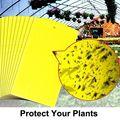 20 шт. клейкие ловушки желтый двусторонний бумажный стикер для летающих насекомых жуков мух белый FH99