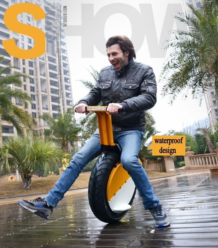 Batterie au Lithium 500 W 360wh une roue équilibrant Monocycle Scooter électrique auto équilibrage Scooter électrique 17 pouces Monocycle de pneu