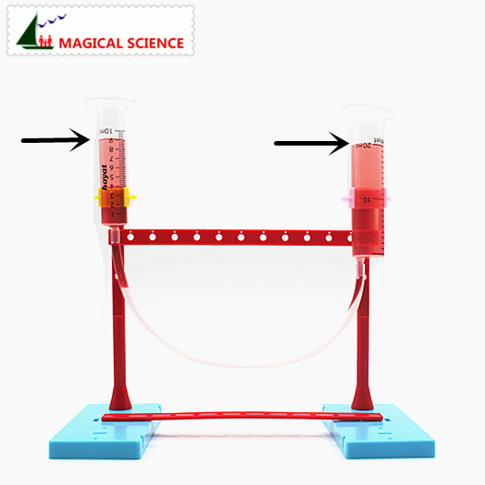 Educational Toys DIY Communicating Vessel Funny Science Experiment Toy Handmade Materials Nurture Hands On Skill Kids Best Gifts