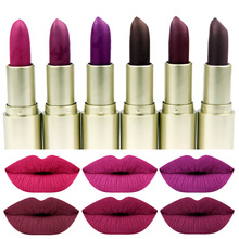 ZD Brand Lips Makeup 24 Color Smooth Sexy Matte Lipstick Easy to Wear Red Paint Long Lasting Lip Stick Pigment Cosmetic L071-48M