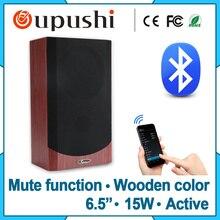 Pa 15w digital audio speaker bluetooth wall mount wi-fi audio system C-6