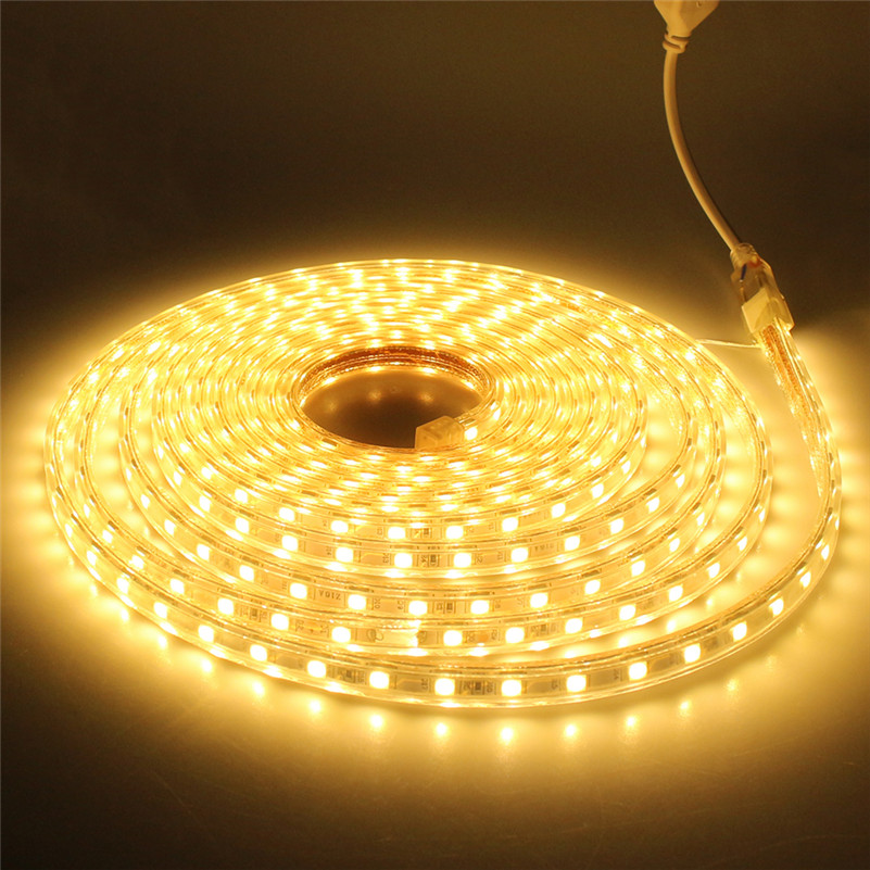 Waterproof 5050 AC220V 1 Meter led strip light 60led/M White/Warm white Outdoor holiday led tape Lamp Decor For Party Christmas