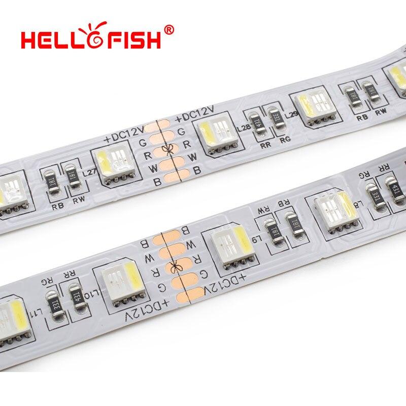 5050-60-RGBW (3)