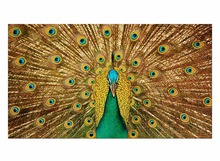 1 Panel Free Shipping Canvas Painting Peacock Wall Pictures Decoration Home Decor Oil Paintings for Living Room Modern Framed