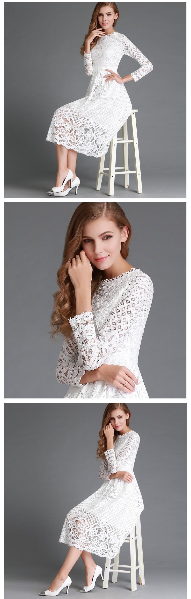 Beauty Long Sleeved Lace Dress 2