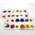24 шт. 3D сухие цветы наклейки настоящие сухие цветы для украшения ногтей Советы DIY инструменты для маникюра с коробкой