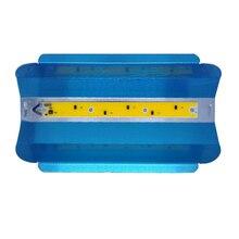 LED LODINE TUNGSTEN 30W 50W 80W Прожектор Прожектор 110V / 220V Светодиодный прожектор Refletor