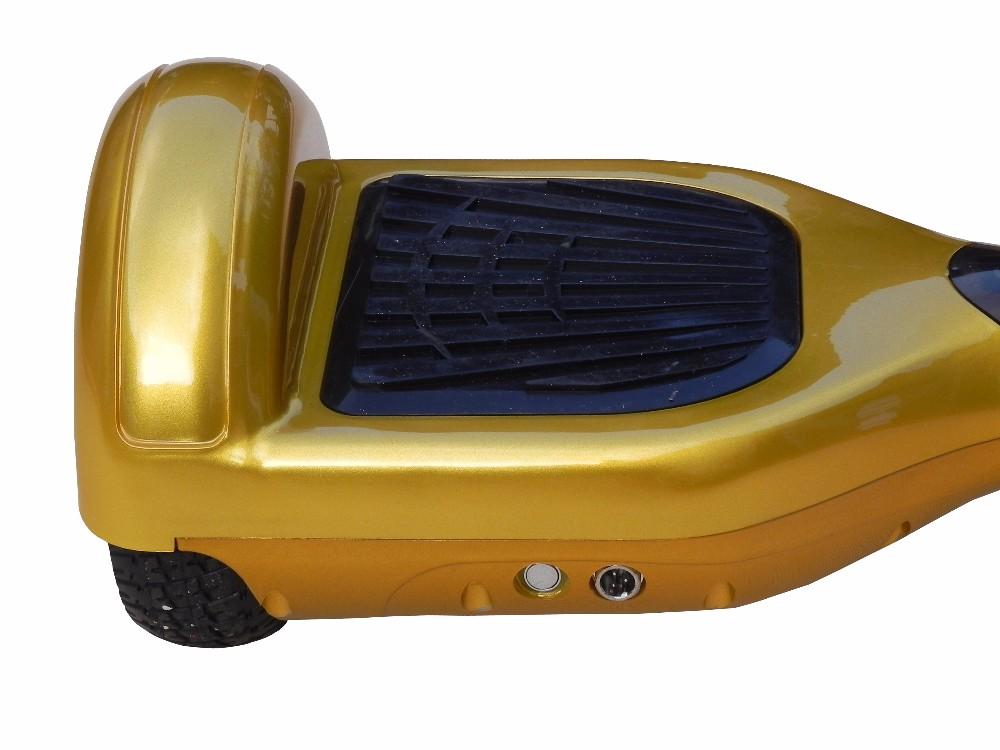 DSCN6610