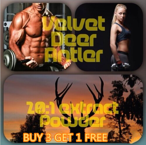 Muscle Building Extract 100% PURE - DEER ANTLER VELVET Extract Powder 20:1 500mg * 100 Caps (Sports supplement) gmp factory supply deer antler velvet extract powder 10 1