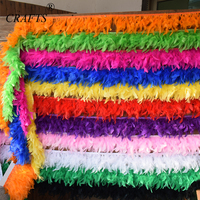 10 meters Turkey feather trim cloth edge DIY Sewing clothing and decorative wedding party