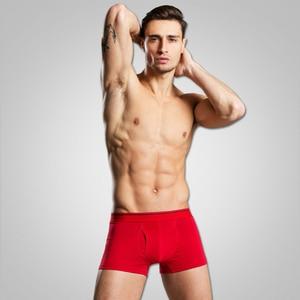 Image 5 - Cuecas calzoncillos masculinas, 4 pçs/lote algodão, cuecas calzoncillos, cuecas masculinas soltas, calecon para homens xxxl, xxxl