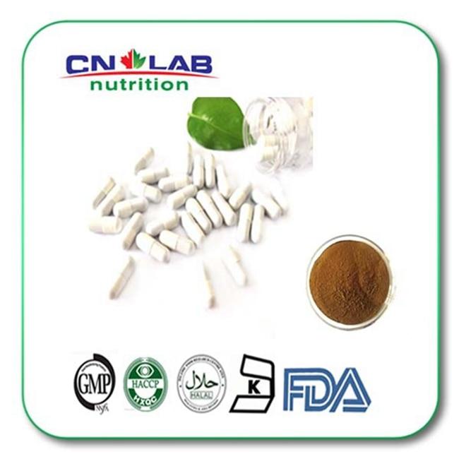 Pure Nature Ginkgo Biloba Extract Powder Capsule 500mg x 200pcs Free Shipping
