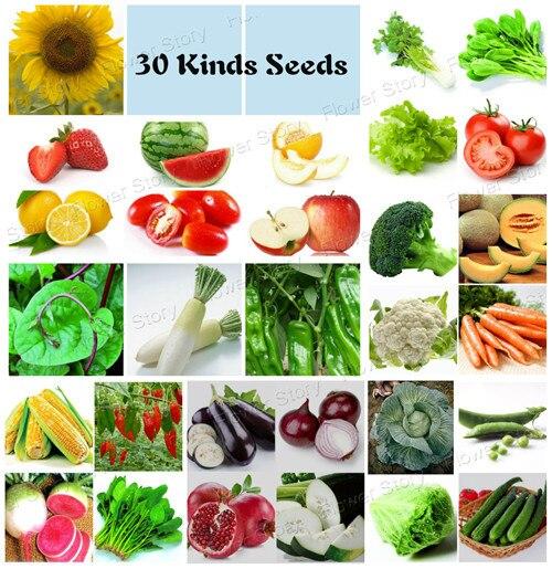 4750 Lot Vegetable Fruit Survival Heirloom Non Gmo Seeds 30 Varieties Diy Home Garden Kitchen