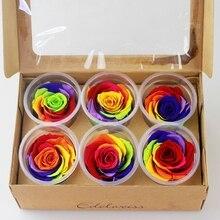 Эквадор импорт красочные Радуга Роза DIY Премиум сохранились цветок 6 шт. роза/коробка(набор) 5-6 см вечерние свадебные садовый декор