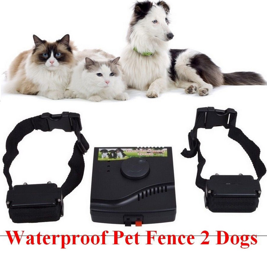 Waterproof Safety font b Pet b font Training Control Underground Electric Device Dog Fence Fencing System
